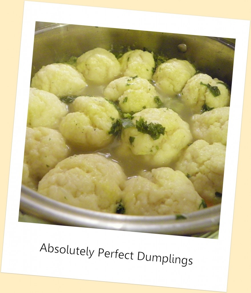 Absolutely Perfect Dumplings - Celebrating Family