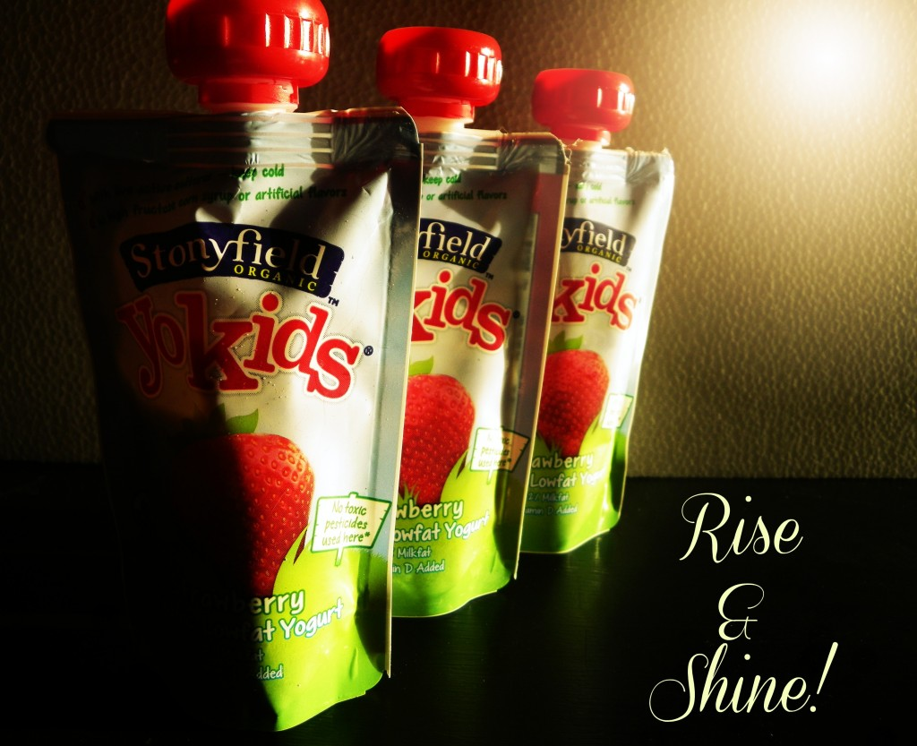 Stonyfield organic yogurt pouches
