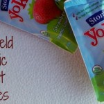 Quick Snack or Breakfast: Stonyfield Organic Yogurt Pouches