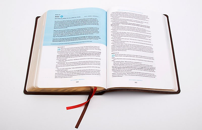 the CSB (Christian Standard Bible) Day-by-Day Chronological Bible which features a narrative approach to the Bible. This Bible is arranged into a fresh chronological reading plan with daily readings guided by Dr. George Guthrie.