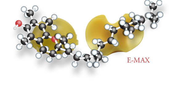 E-MAX Highly Crosslinked Polyethylene