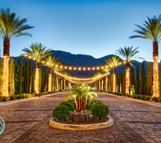 Host – Palm Springs