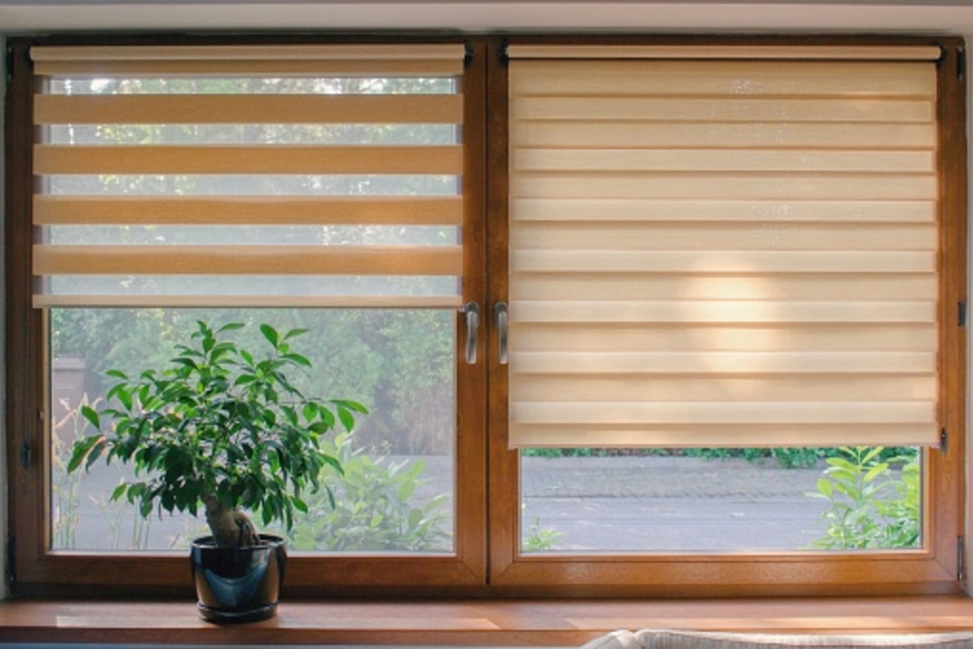 Why Should You Choose Roller Shades For Office?
