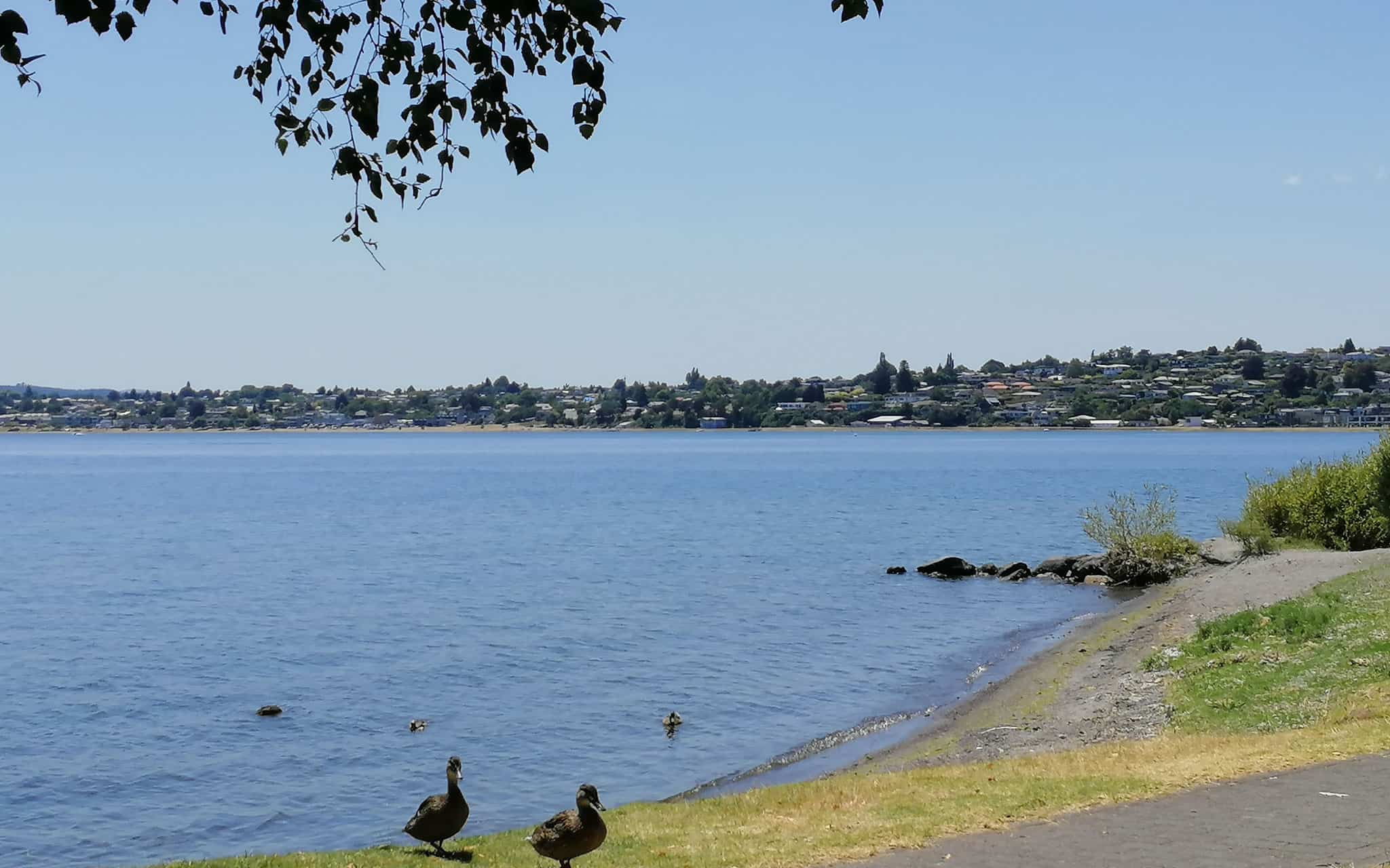 Stay-in-Taupo-Accommodation-Bed-and-Breakfast-in-Taupo-Waikato-New-Zealand-16