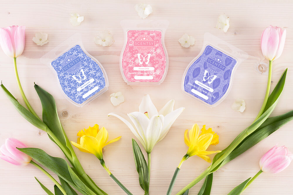 photo of blue hyacinth, flower child, and french lavender Scentsy Wax Bars