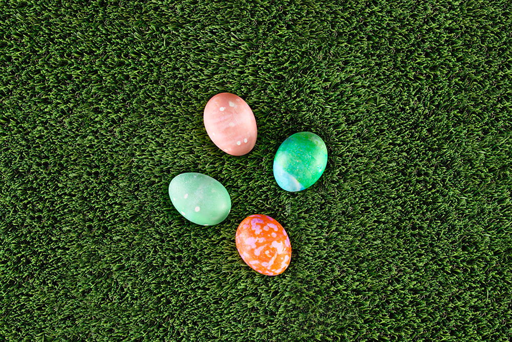 Photo of colored eggs atop grass