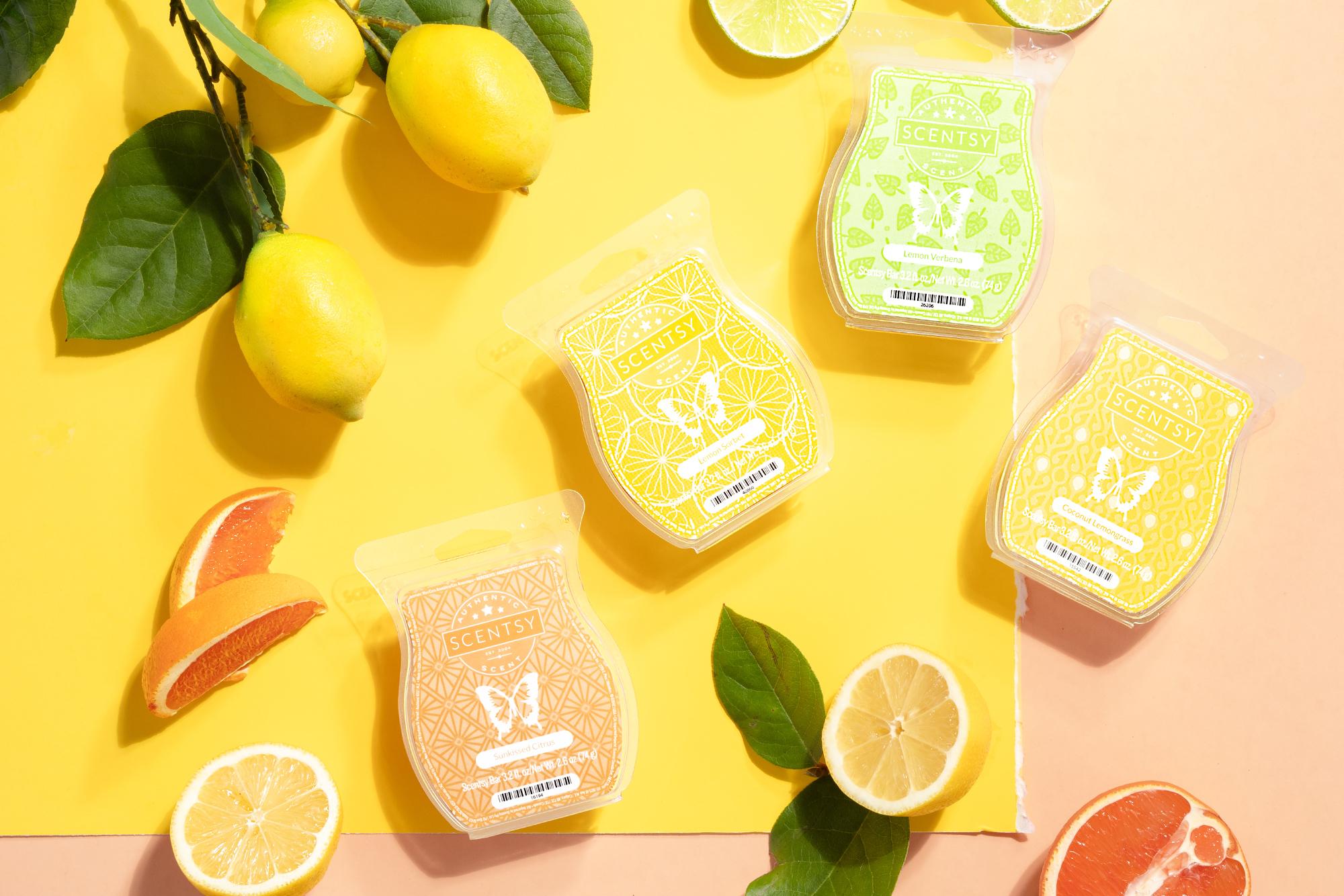 Citrus fragrance family wax bars