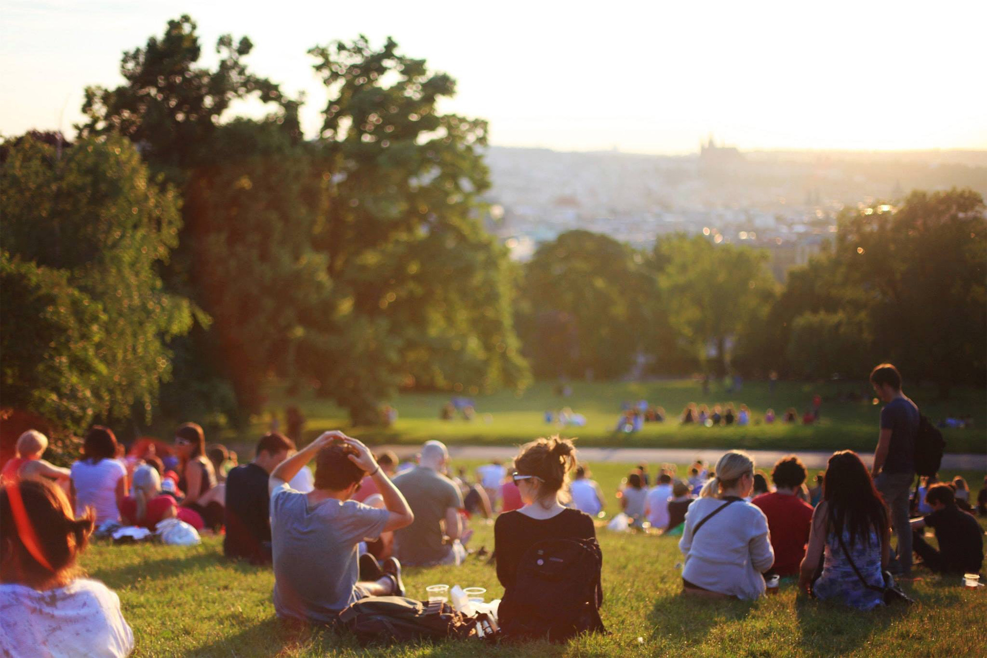 scenic view of picnic goers in a park