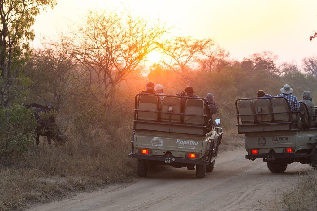 2017 African Safari Incentive Trip