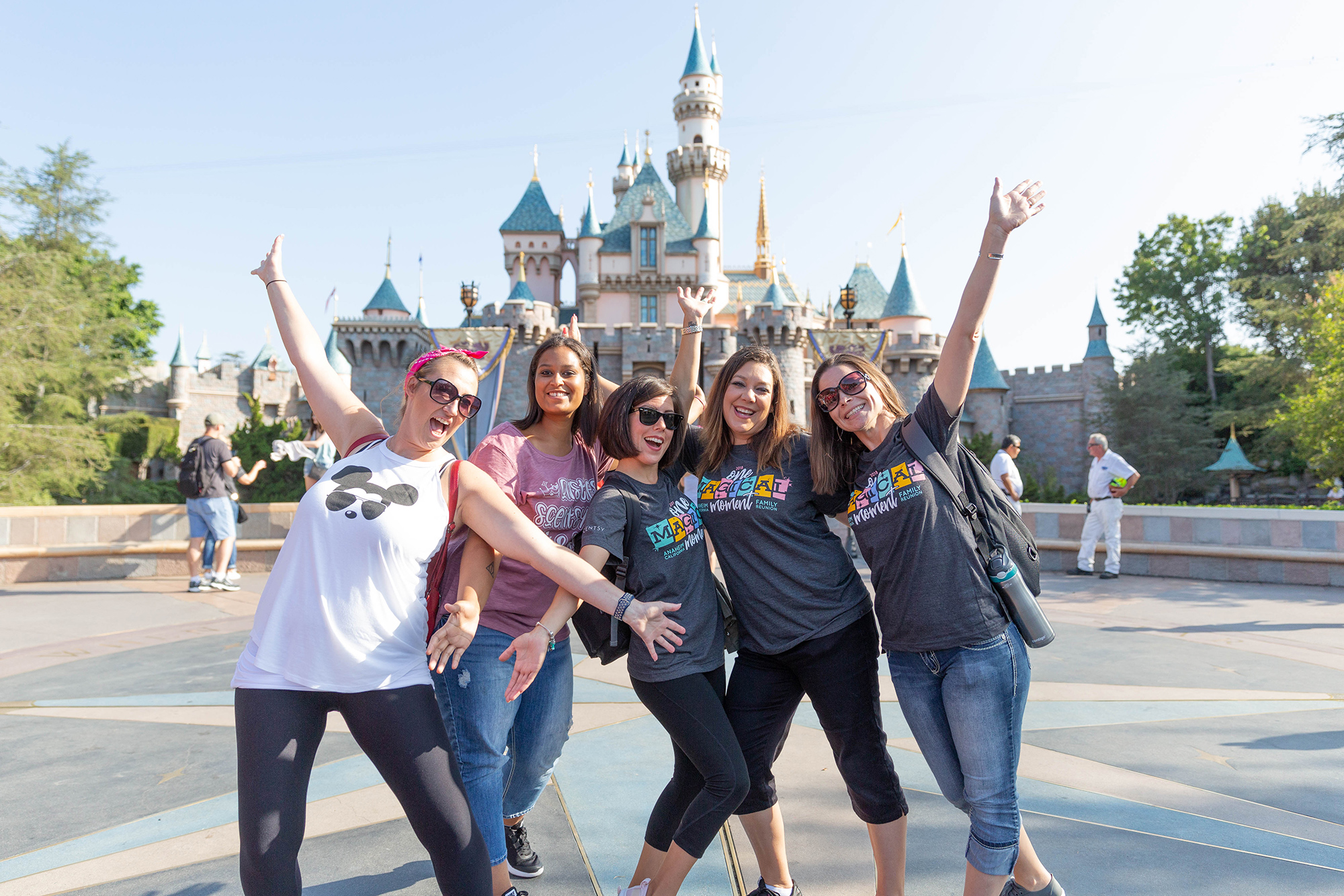 happy group of consultants at disney world in front of Cinderella's castle
