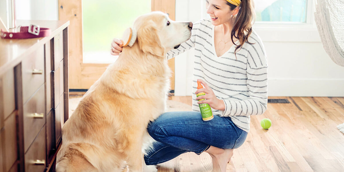 Woman using Oatmeal & Aloe Scentsy Pets product on her golden retriever
