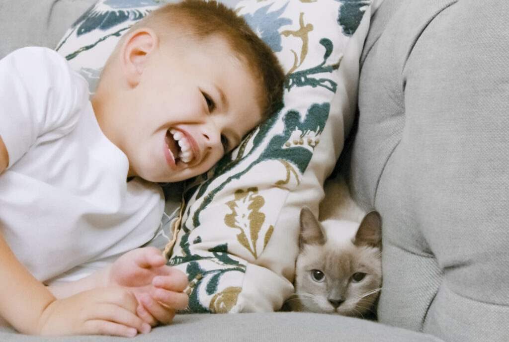 Child laying on couch while cat hides under pillow on couch