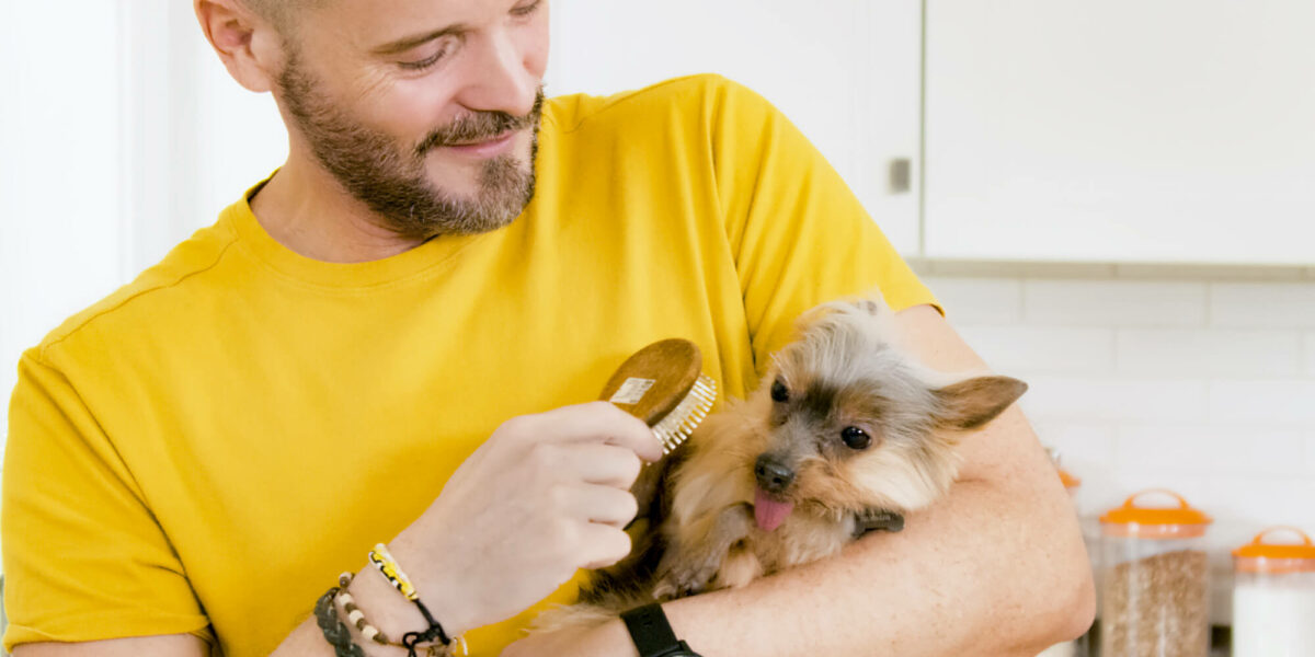 Man grooming his dog while it lays in his hands