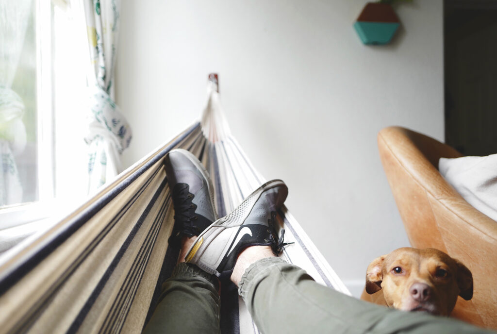 Person relaxing on an indoor hammock with their dog watching them