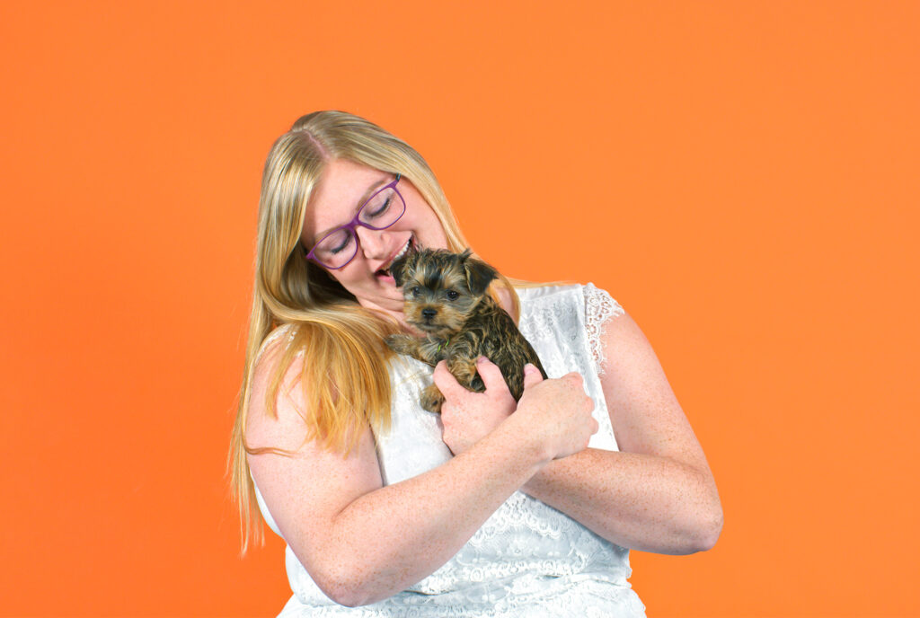 Cute dog being held by owner with an orange background