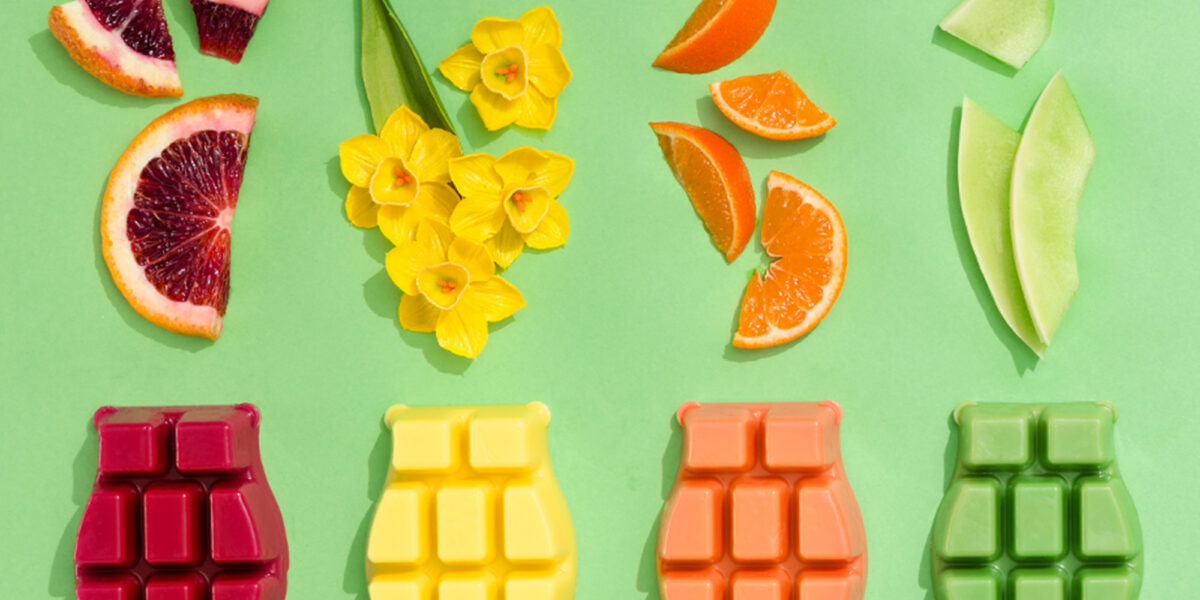 Scentsy clamshells with fruits and flowers