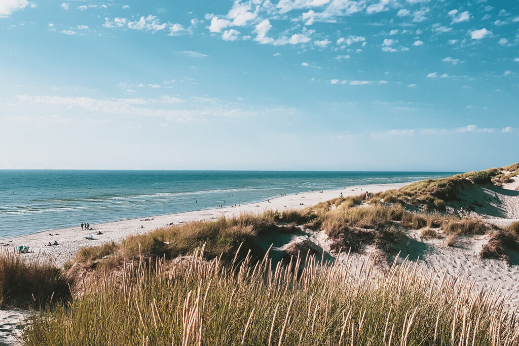 Seaside beach with grass and clear skies