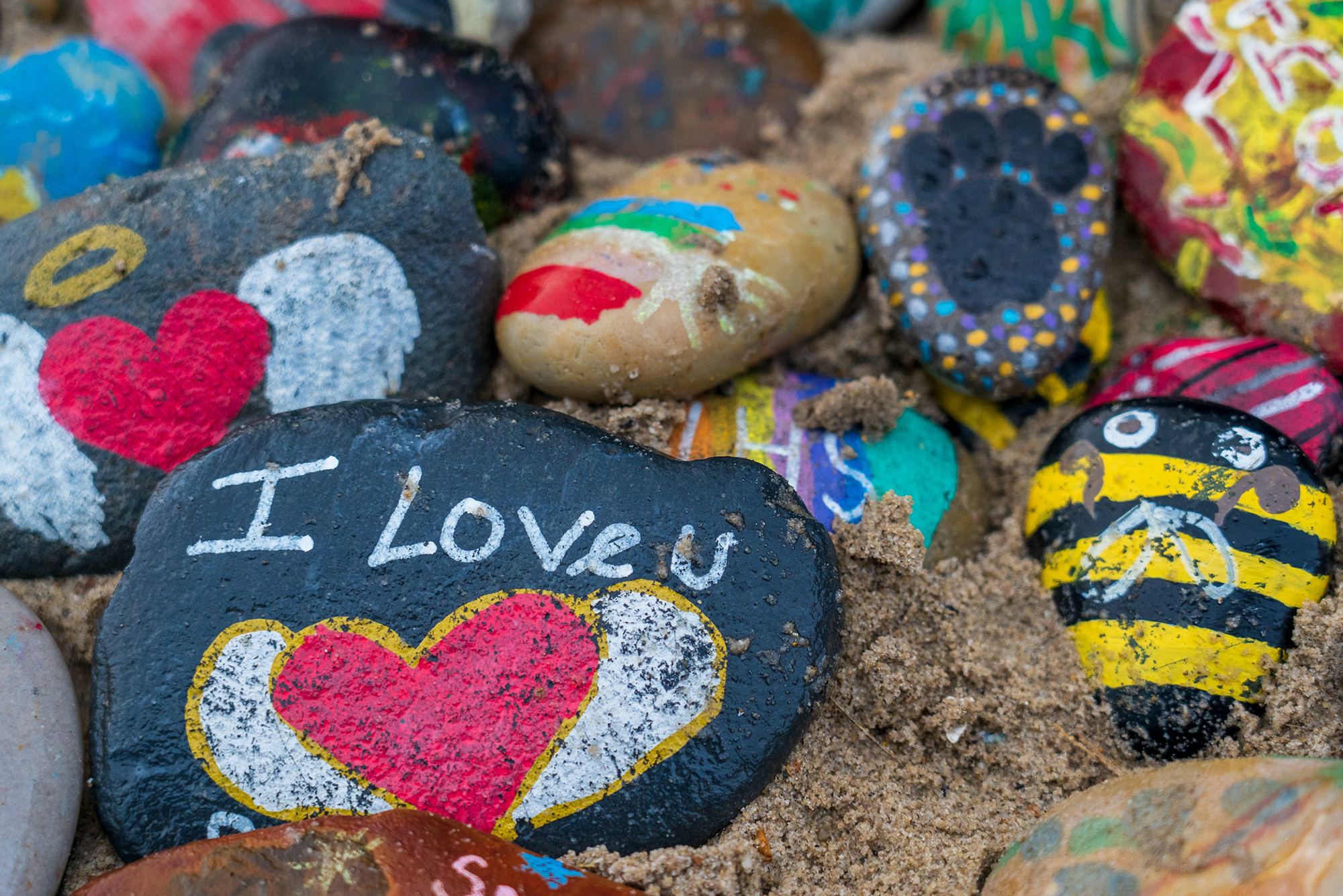 Painted Rocks on the ground