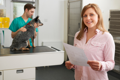 Happy Woman Looks At Bill In Veterinary Surgery