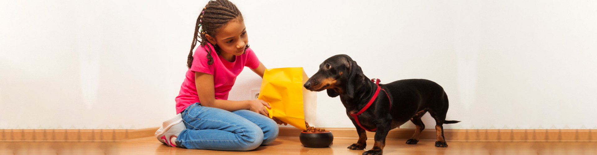 young girl feed the dog pet with food