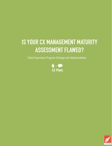 CX Manangement Maturity Assessment document