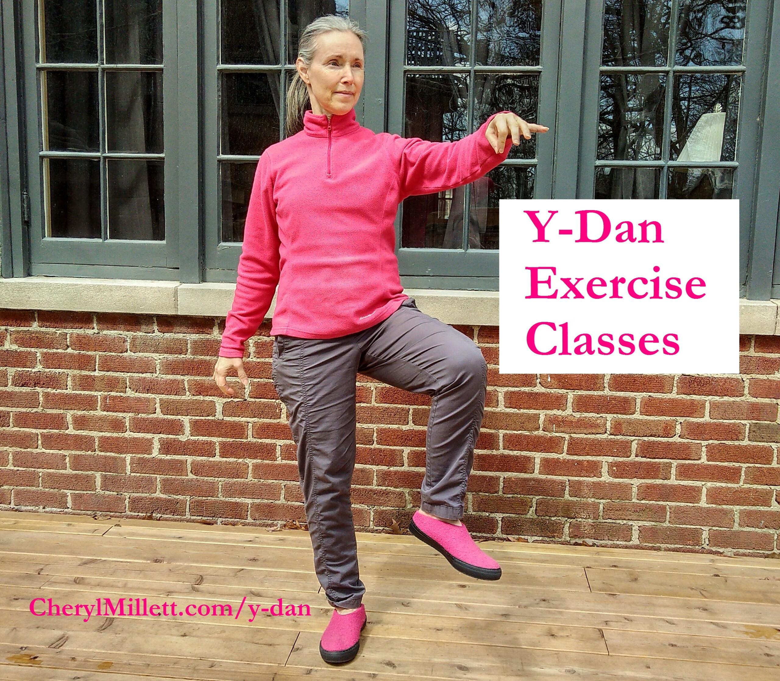 Y-Dan Exercises