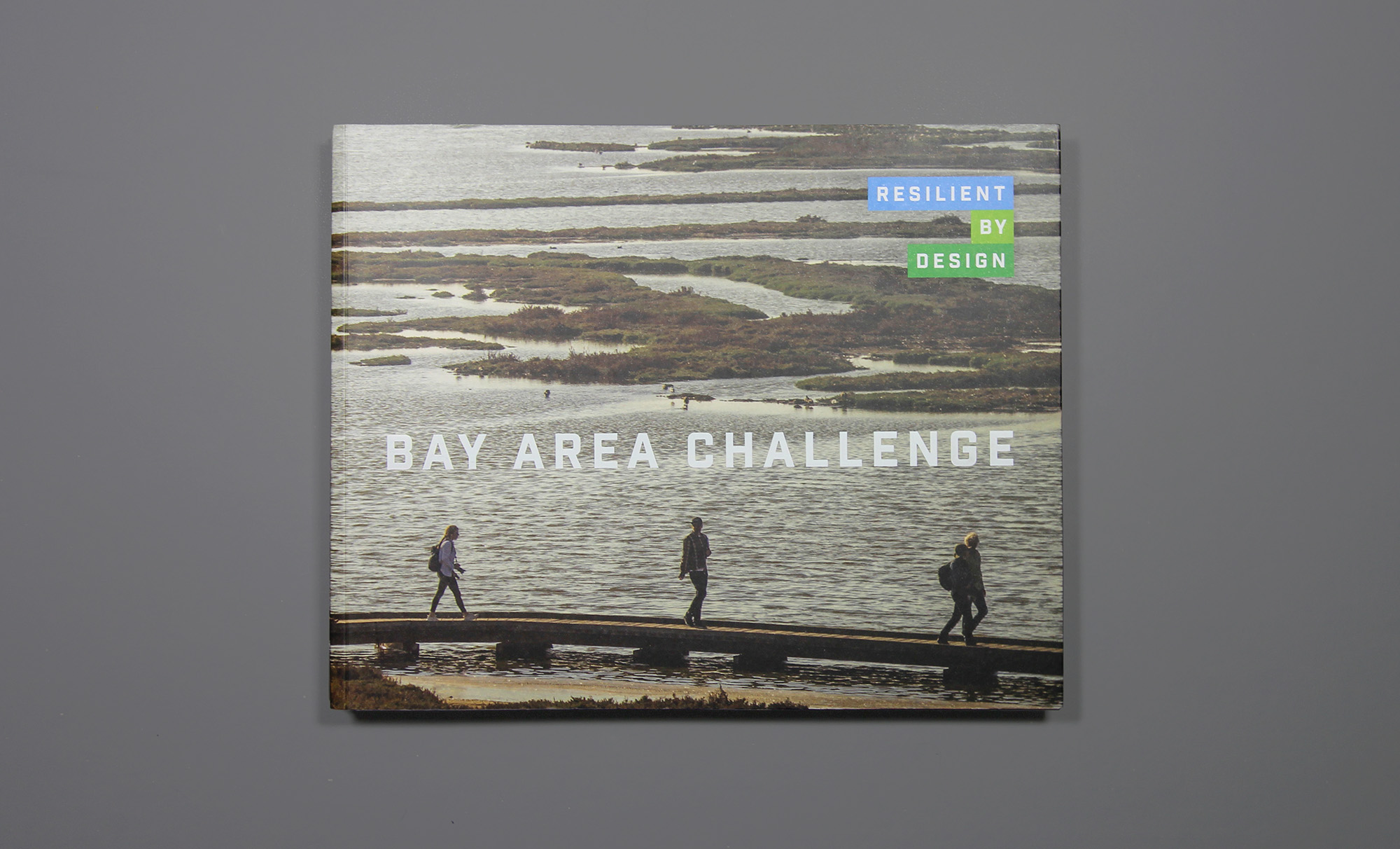 Resilient-by-Design-cover-flat-hazen