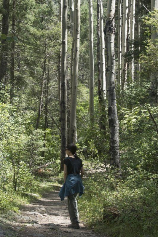 Harumi Takikawa Dorrance enjoys the forest beauty.