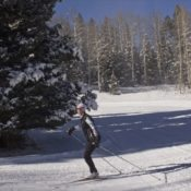 Enchanted Forest Cross Country Ski & Snowshoe Area