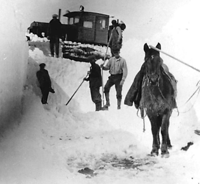 A horse helps clear drifts on Jackson Hill north of Angel Fire.