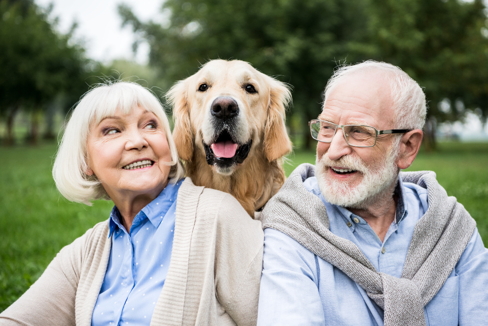 Living With A Dog In Your Senior Years