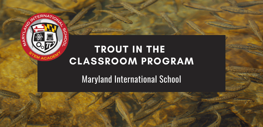 Trout in the classroom program