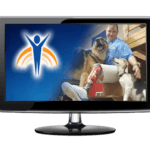 "Video monitor with Springer Prosthetics ""Canine"" image, woman with prosthetic leg with two dogs."