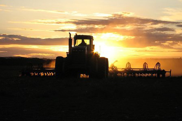 Advice From Top Young Farmers