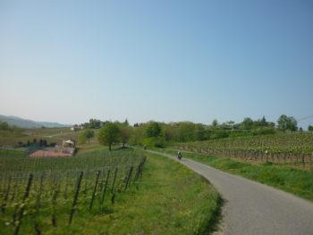 italiainpiega-pieghe-meravigliose-itinerari-moto-nord-italia-vinando-oltrepo' pavese-panorama 3