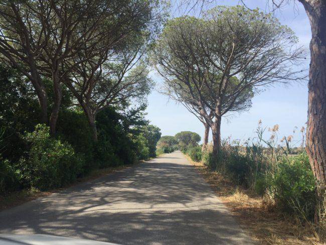 italiainpiega-pieghe meravigliose-itinerari moto centro italia-argentario-parco maremma