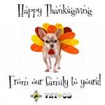 Vetco thanksgiving