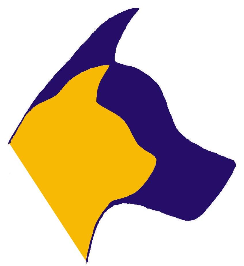Logo LSU Colors