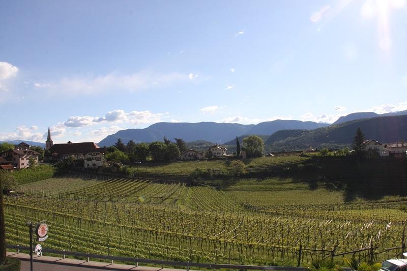 Berge und Weinberge