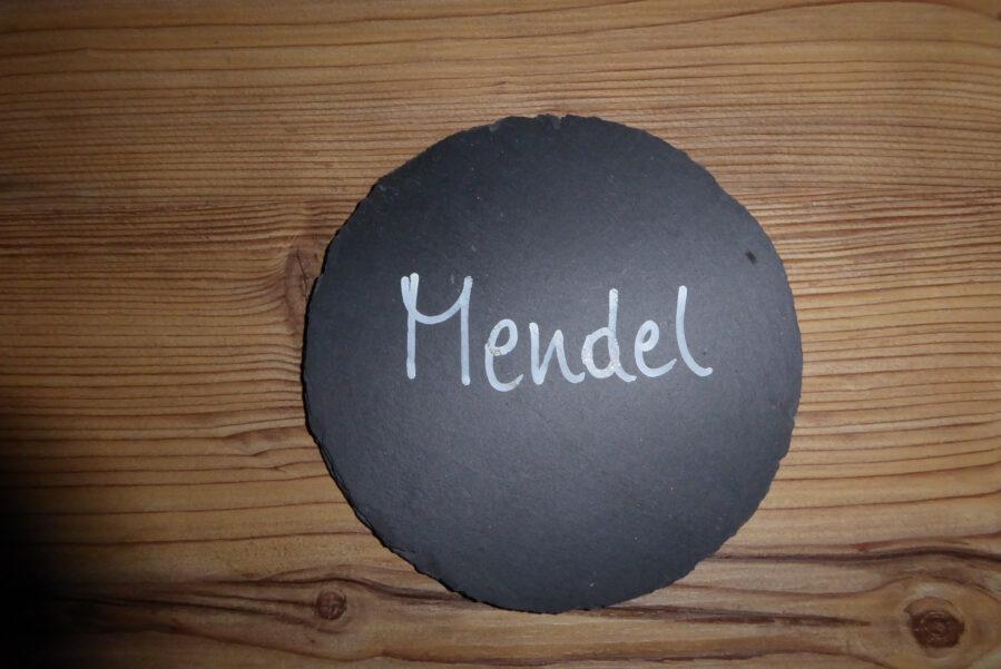 apartment Mendel the door to heaven