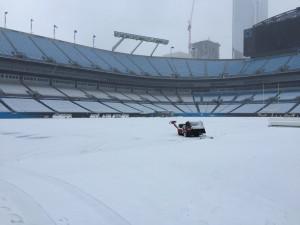 Inverno vem prejudicando o estado do gramado dos Panthers