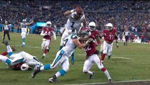 panthers cardinals 1