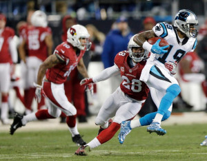 panthers cardinals 2