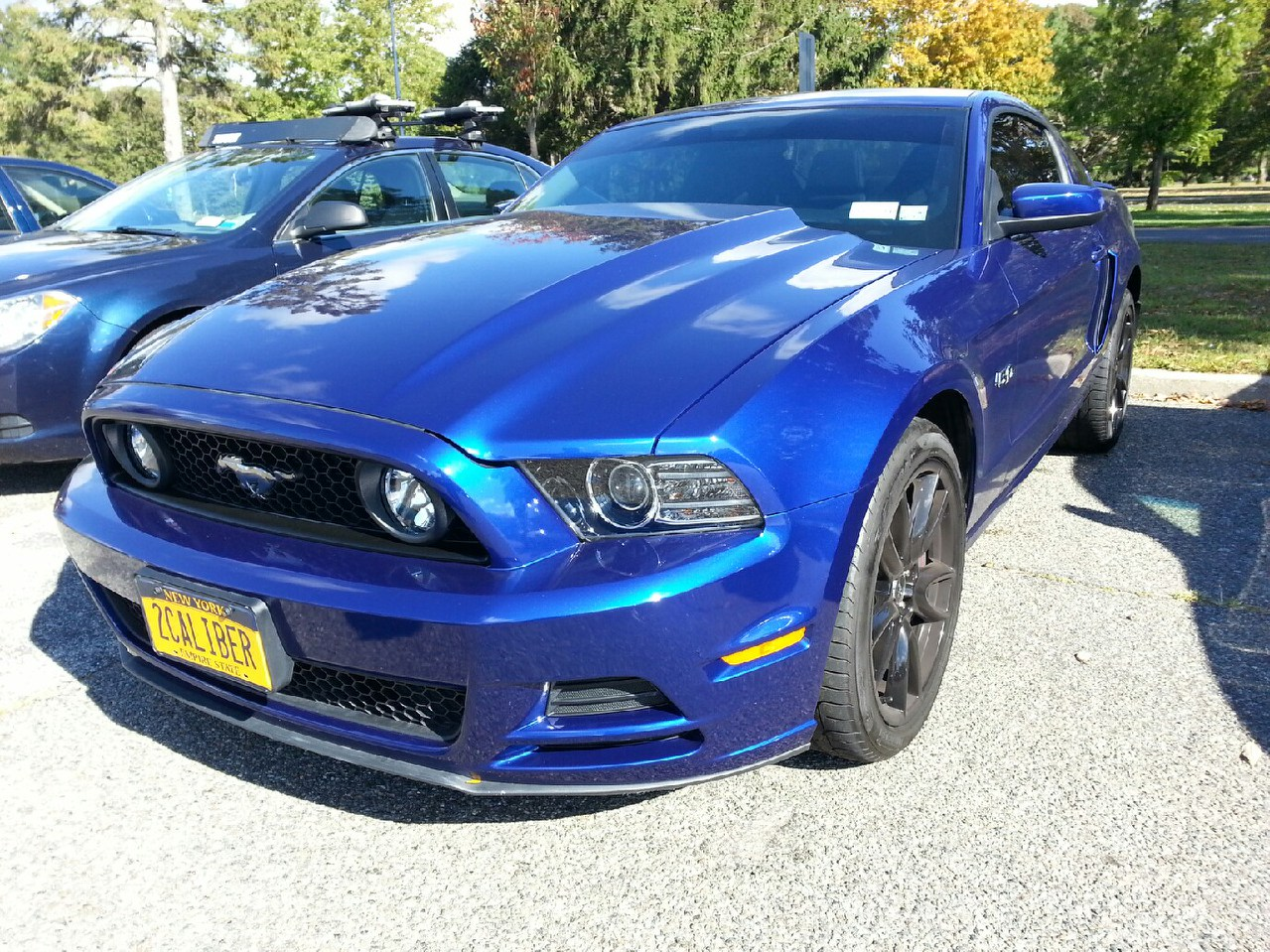 mustang-front-fixed