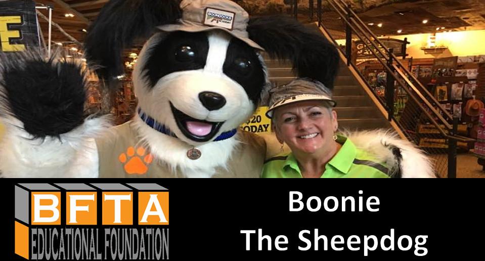 Boonie the Sheepdog