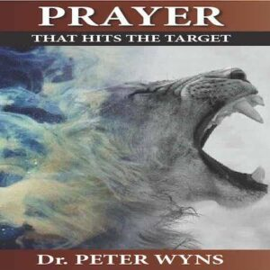 Prayer that Hits the Target Book Product Image