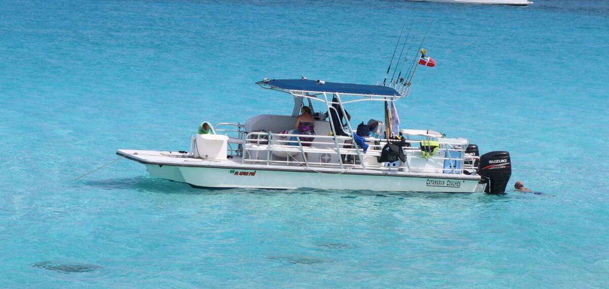 31'  Fish/DIve Boat