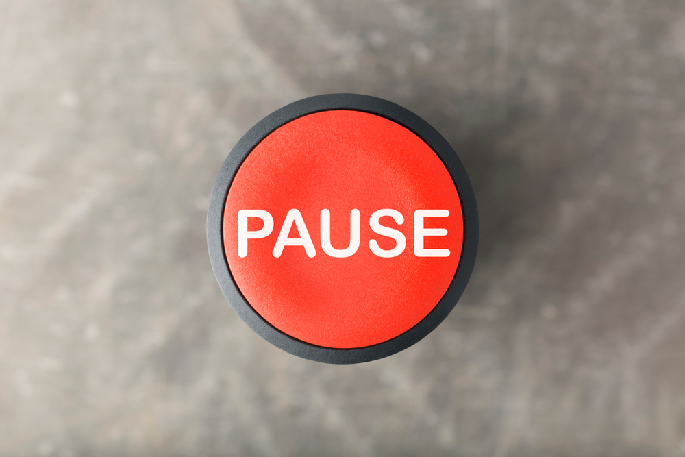 A Pandemic Pause