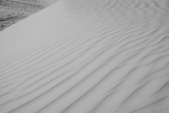 White-Sands-Lines