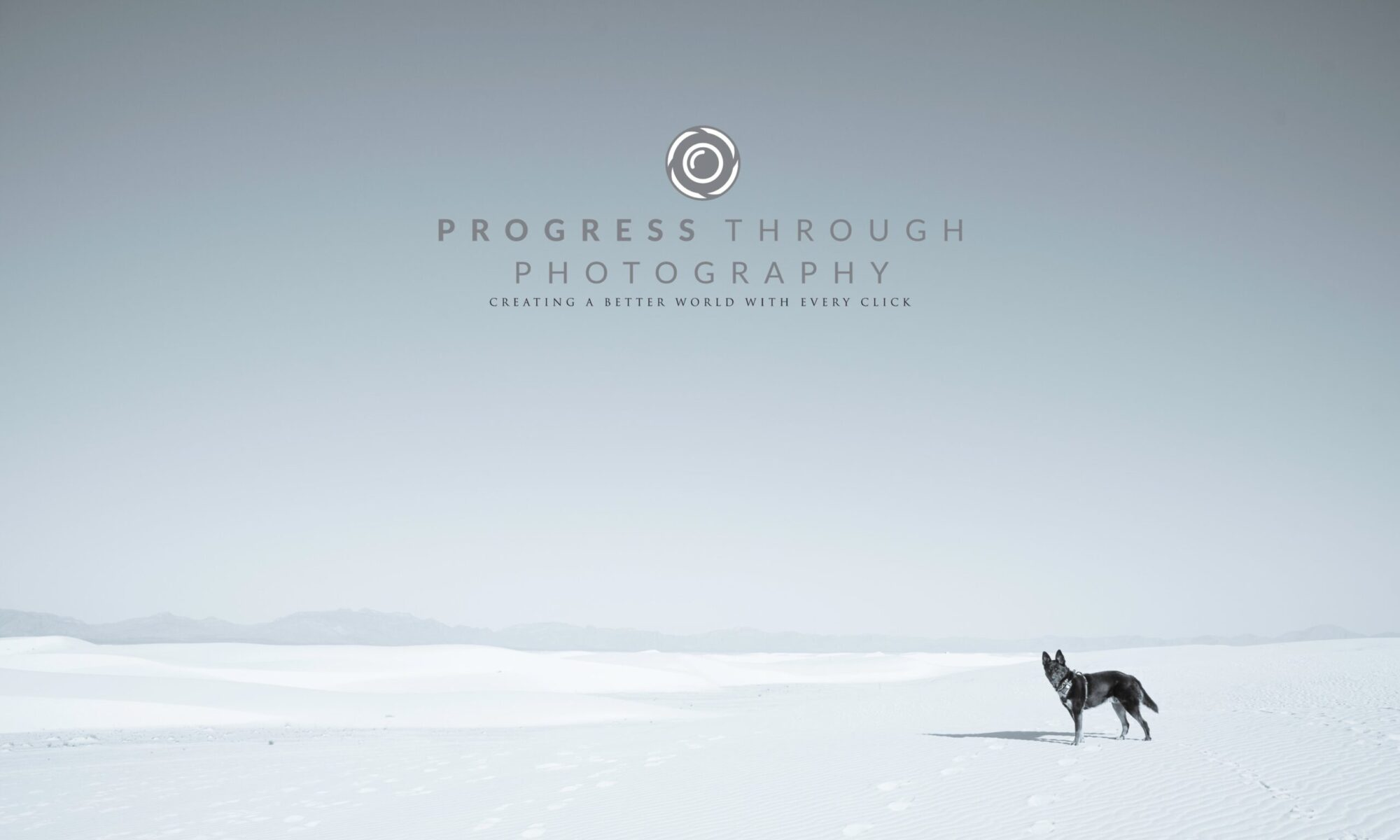 Progress Through Photography